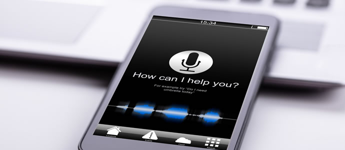 Ranking A Website For Voice Search